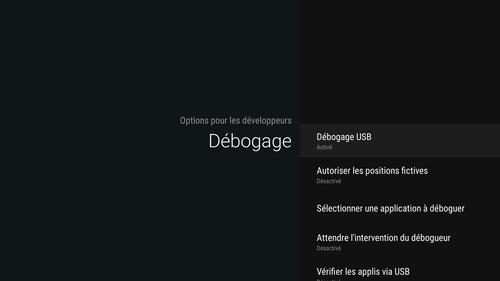 TUTO_Activer_le_d%C3%A9bogage_USB_Nexus_